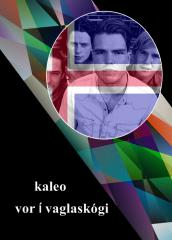 28 Iceland - Kaleo - Vor í vaglaskógi